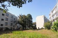 松の木住宅