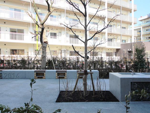 Chitose karasuyama 08